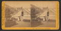 Woodward's Gardens, San Francisco. (Garden view.), from Robert N. Dennis collection of stereoscopic views.png
