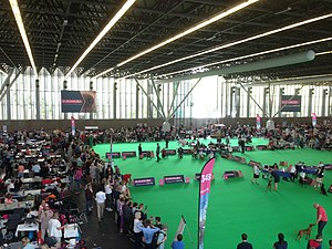World Dog Show, Amsterdam, 2018 - 03.JPG