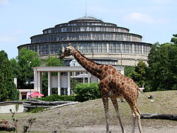 Image illustrative de l'article Jardin zoologique de Wrocław