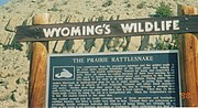 Wyoming's wildlife prairie rattlesnake sign