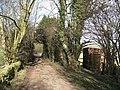 Wyver Lane - Passing the Bird Hide. - geograph.org.uk - 1192988.jpg