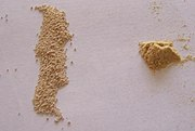 Dry winemaking yeast (left) and yeast nutrients used in the rehydration process to stimulate yeast cells.