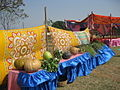 Yellow Pumpkins and other vegetables from Banapiri village - Jharkhand state of India.JPG