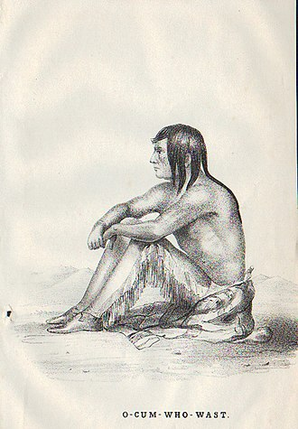 Yellow Wolf (Cheyenne) - Yellow Wolf (O-Cum-Who-Wast) of the Cheyenne, from an 1848 engraving of a painting by James W. Albert.
