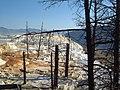 Yellowstone National Park - panoramio - CyberCop.jpg