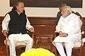 Yohei Sasakawa meets PM Modi.jpg