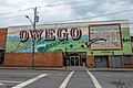 You are here in Owego, New York.jpg