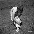 Zdravljenje bolezni z zagovorjeno mastjo za prtin (rahitis)- 3 krat po hrbtu, Vojsko 1959.jpg