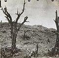 Zerschossener Wald und Geschoßkrater auf San Marco bei Görz.jpg