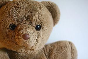 A teddybear.