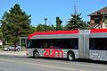 ZumBus3.jpg