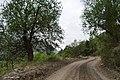 (((منظره ای از جاده چاشم -پل سفید))) - panoramio (3).jpg