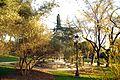 ® M.D. MADRID PARQUE DEL OESTE ARBOLEDA ◙ - panoramio (3).jpg