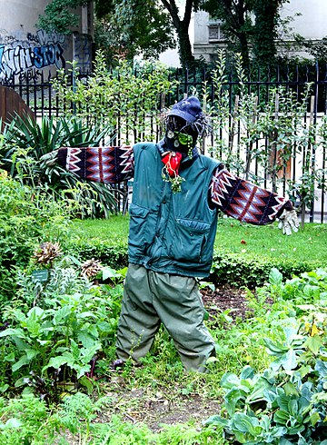 Épouvantail scarecrow potager JdP.jpg
