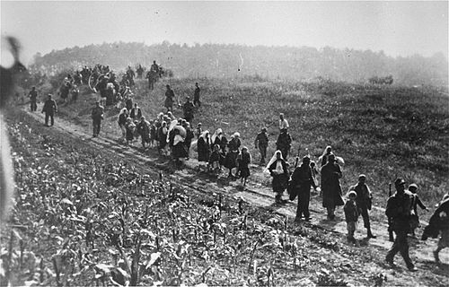 "German forces and Ustase collaborators lead a column of Serbs to the Sabac internment camp during anti-partisan ""cleansing"" operations. Sabac internment camp.jpg"