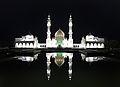 Белая мечеть (ночь).jpg