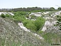 Дворічанський національний природний парк 25.jpg