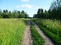 Дорога к Андроновсим горам-The road to the mountains of the Andronovo, начало июля 2011 - panoramio.jpg