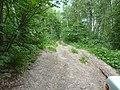 Дорога к перевалу - panoramio.jpg