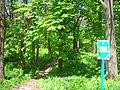 Західна частина парку ім.І.Франка в м.Буську. Собача гірка.JPG