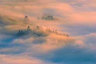 Carpathian Biosphere Reserve - A sea of clouds