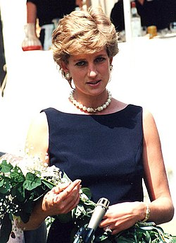 Diana, Prinses van Wallis in 1995
