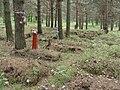 Мемориальное кладбище жертв политических репрессий Макариха. Котлас (05).JPG