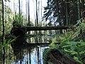 Минская областьУзденский район - panoramio.jpg