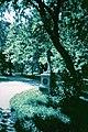 Новгород-Сіверський, центральний парк, ранок.JPG