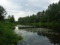 Река Селижаровка (The Selizharovka river) - panoramio.jpg