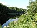 Украина, Киев - Голосеевский лес 08.jpg