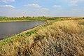 У пруда. Вид в юго-восточном направлении - panoramio.jpg