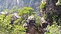 Чжанцзяцзе - panoramio (6).jpg