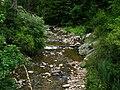 Широколъшка река.jpg