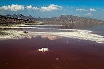 سرخی دریاچه ارومیه-۲۴.jpg