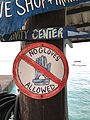 """No Gloves Allowed"" sign – Buddy Dive, Bonaire.jpg"