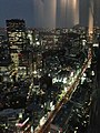 六本木ヒルズ大展望台 東京シティビュー - panoramio (36).jpg