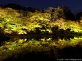 御船山楽園の夜(Mifuneyama Rakuen Garden at night) 26 Nov, 2015 - panoramio.jpg