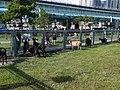 浮洲橋下,羊咩咩的家。大漢溪右岸河濱自行車道。 - panoramio.jpg