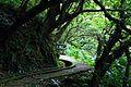 青山瀑布步道 - panoramio (2).jpg