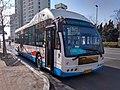 青岛公交31路车辆.jpg
