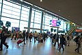 0088 Domodedovo International Airport 16th of August 2016.jpg