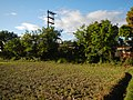 0126jfLandscapes Sunsets Fields Maronquillo San Rafael Bulacanfvf 25.JPG