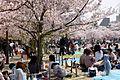 090411 Himeji Castle Hyogo pref Japan16s5.jpg