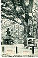 09972-Budapest-1908-Johannesberg - Königin Elisabeth Betschemel-Brück & Sohn Kunstverlag.jpg