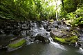 1027 - Samil Waterfall National Park.jpg