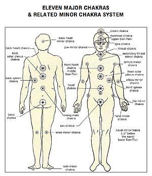 A description of the major chakras and minor c...