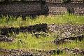 15-07-13-Teotihuacan-La-Ciudadela-RalfR-WMA 0099.jpg