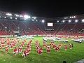 15. sokolský slet na stadionu Eden v roce 2012 (63).JPG