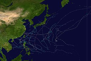 1966 Pacific typhoon season summary.jpg